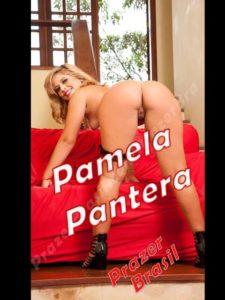 1PamelaPanteraCapa-225x300 Mulheres - DF