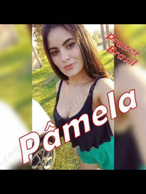 PamelaMulherSC - 1PamelaMulherSCcapa.jpg