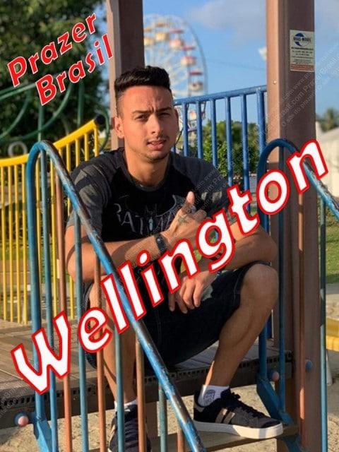 1WellingtonHomSPcapa Wellington