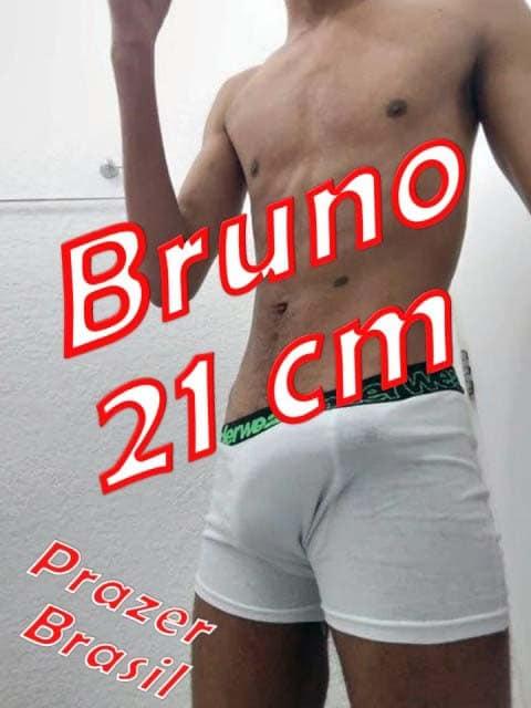 1Bruno21cmCapa Bruno 21 cm