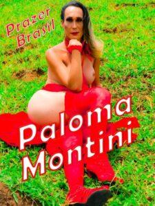 1PalomaMontiniTravestiJacareiCapa-225x300 São José dos Campos - Travestis