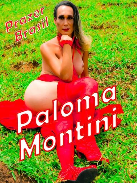 1PalomaMontiniTravestiJacareiCapa Paloma Montini