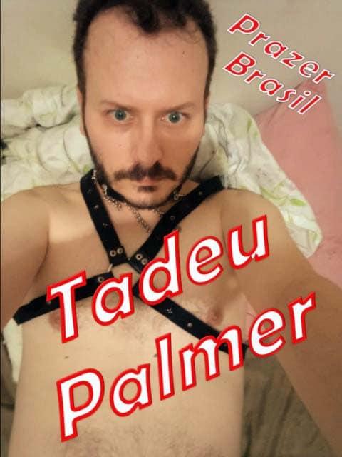 1TadeuPalmerCapa São Paulo Capital - Homens