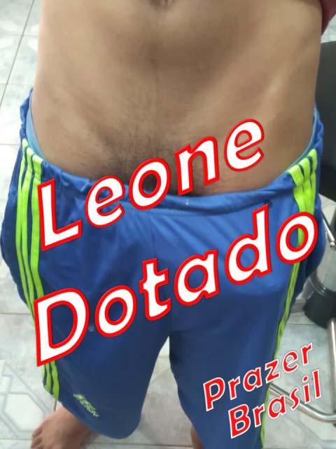 1LeoneDotadoCapa Leone Dotado